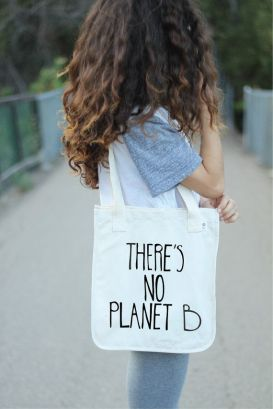 278ad301ed9116b8a5539d8f86394295--reusable-shopping-bags-reusable-bags