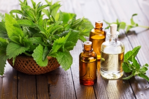 peppermint-oil-and-plant-1