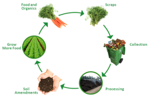 organics recycling lifecycle