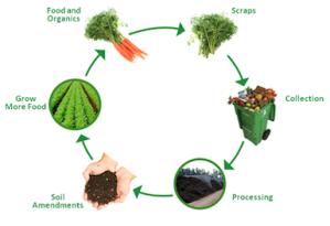 organics recycling lifecycle